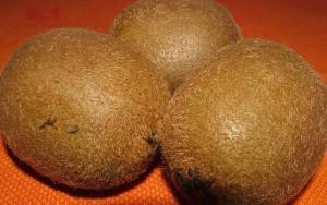 Dried Kiwi (1)