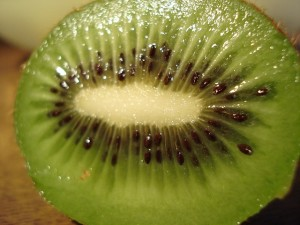 Dried Kiwi (11)